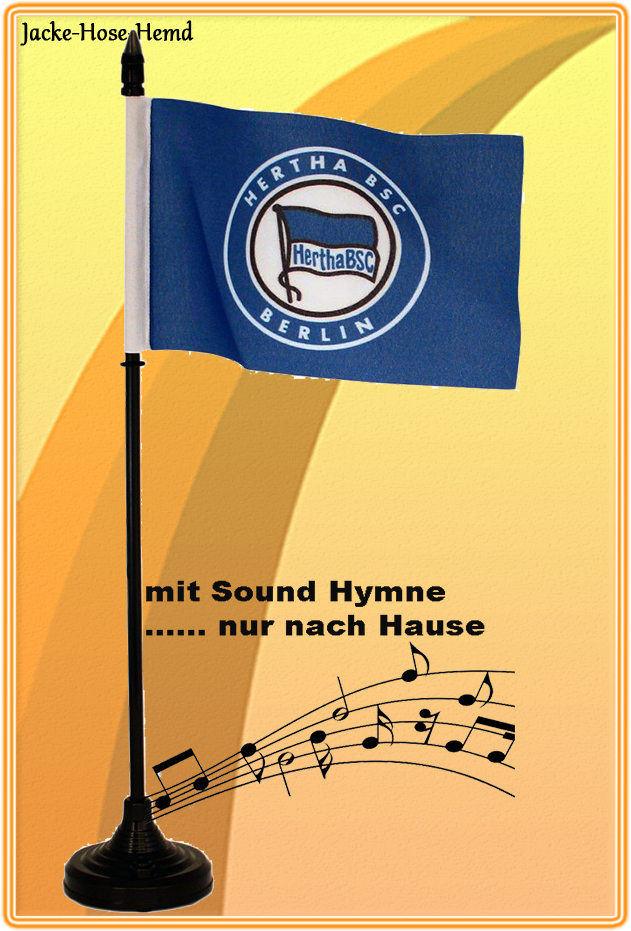 Soundfahne Berlin Hertha BSC